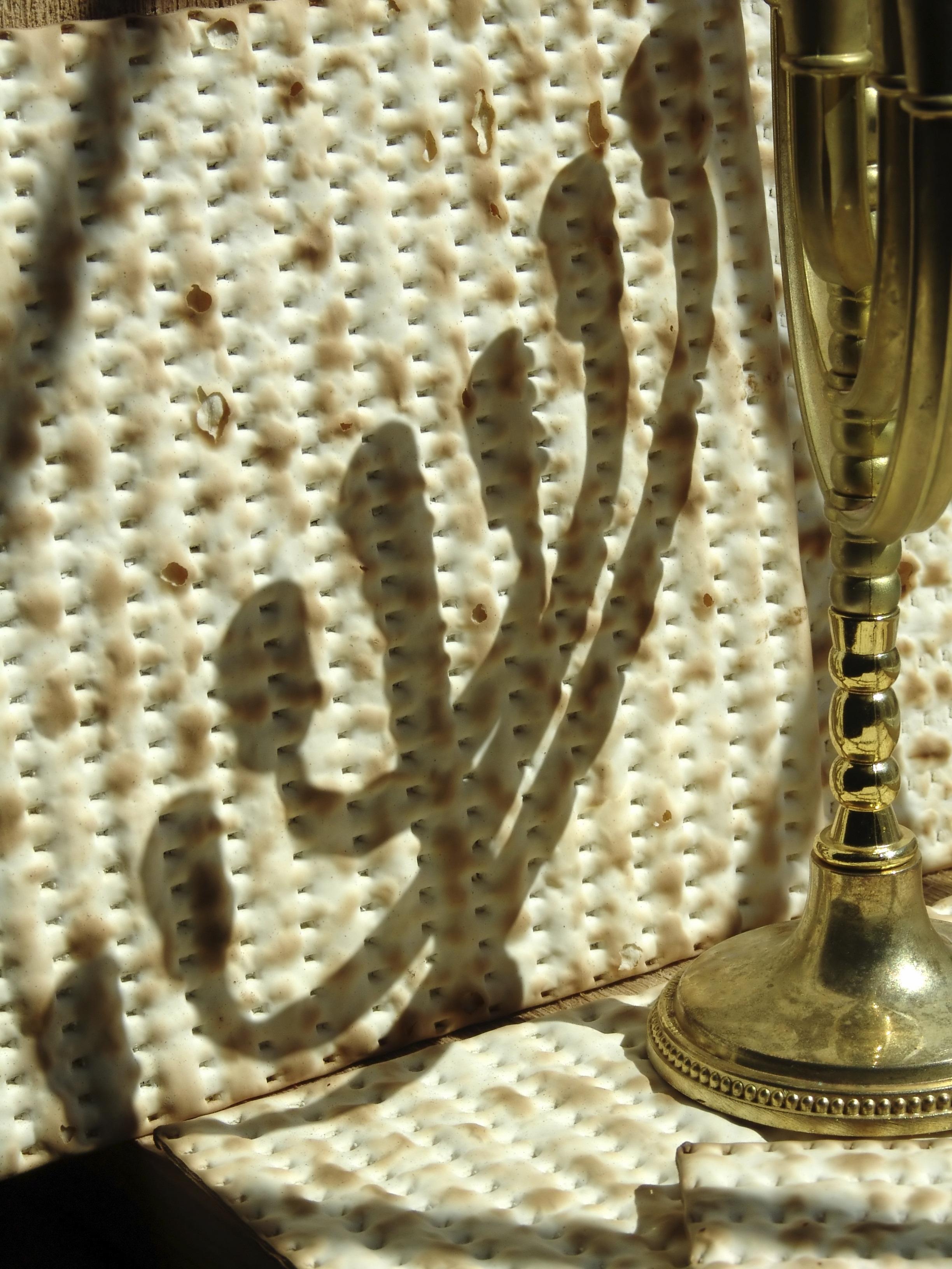 Bruce Levy Memorial 2020 JFS Passover Food Baskets Program